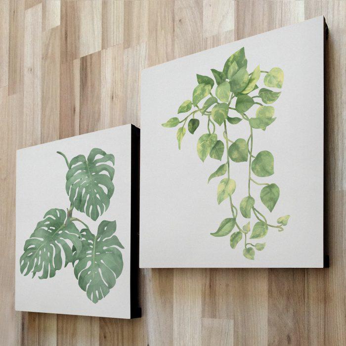 fotom 2x1 - Plantas 1