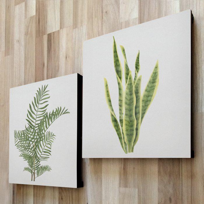 fotom 2x1 - Plantas 2
