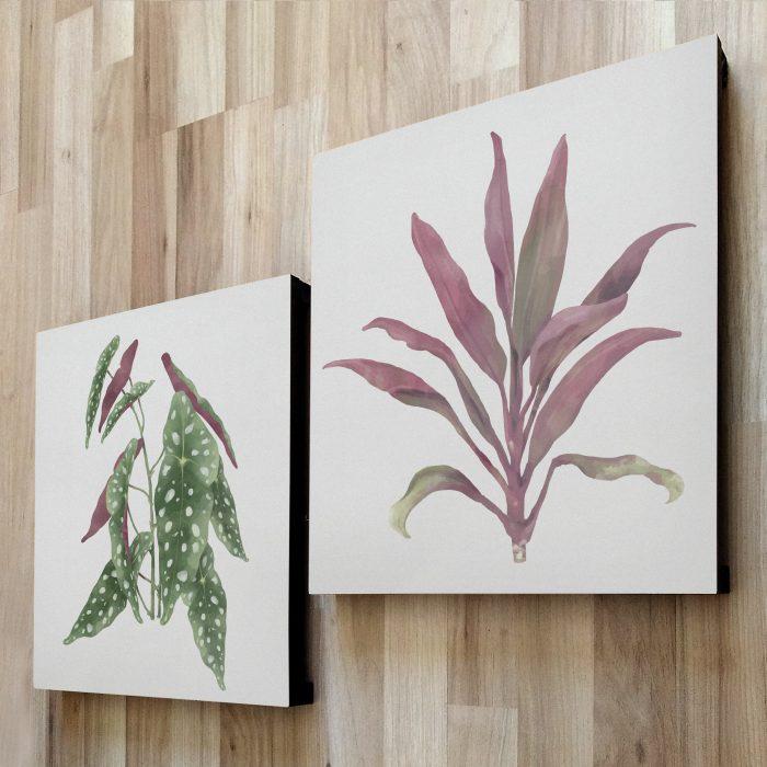 fotom 2x1 - Plantas 3