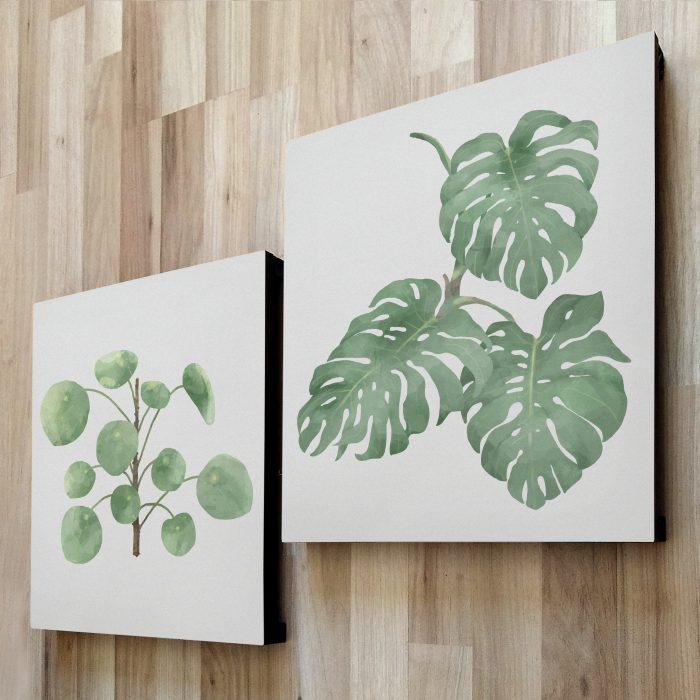 fotom 2x1 - Plantas 4