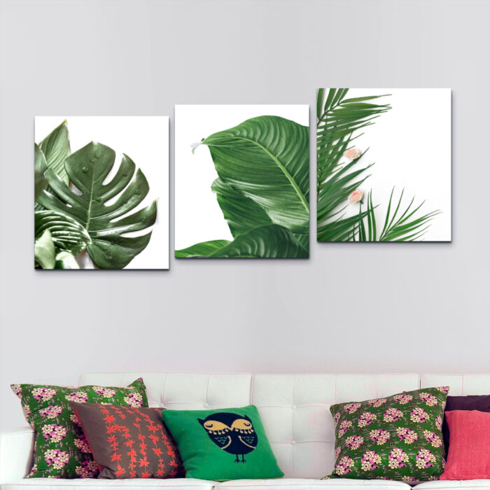 Hojas de Planta Tropical